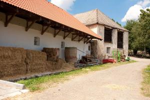 Statek Horní Dvorce – 30. 7. 2016