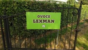 Ovoce Lexman 10. 9. 2016